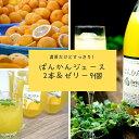 【ふるさと納税】柑橘「河内ばんかん」ジュース2本&ゼリー9個...