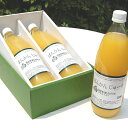 【ふるさと納税】柑橘「河内ばんかん」果汁と蜂蜜だけで作ったジ...
