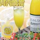 【ふるさと納税】柑橘「河内ばんかん」ジュース1本とゼリー3個のセット