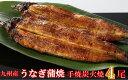 FY09-R24 九州産手焼き炭火うなぎ蒲焼4尾(1尾あたり120〜149g)