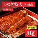 【ふるさと納税】【A5-001】魚市場厳選 九州産うなぎ蒲焼(特大サイズ3尾)...