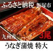 【ふるさと納税】【B001】魚市場厳選 九州産うなぎ蒲焼(特大サイズ3尾)