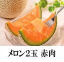 【ふるさと納税】【B007】九州産赤肉メロン2玉(温室)...