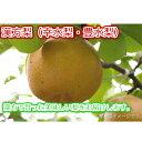 【ふるさと納税】梨(幸水梨・豊水梨)<6〜7個入>※7月〜10月上旬発送予定 漢方で育った美味しい梨