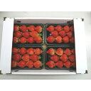 【ふるさと納税】【期間限定】完熟 あまおうイチゴ250g×4...