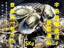 【ふるさと納税】宇島漁港直送!豊築漁協 「豊前海一粒かき」(5kg)※1月~2月に順次発送予定