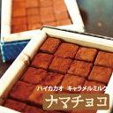 【ふるさと納税】NAMAchoco「ナマチョコ」(キャラメル