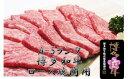 【ふるさと納税】A277 【A-5ランク】博多和牛ロース焼肉...