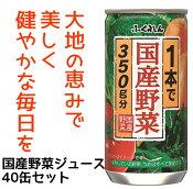 【ふるさと納税】A357 1本で国産野菜350g分 野菜ジュース195g40缶セット