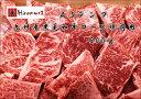 【ふるさと納税】九州産黒毛和牛ロース(500g)