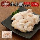 【ふるさと納税】九州産 牛小腸 ホルモン 500g 焼肉 ホ...