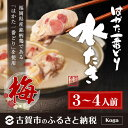【ふるさと納税】<はかた一番どり>水炊きセット(梅)(3〜4...