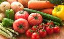 【ふるさと納税】季節の野菜お楽しみセット ふれあい広場ふくま...