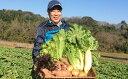 【ふるさと納税】種にこだわり!季節の特別栽培野菜セット 【野...