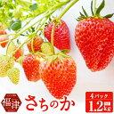 【ふるさと納税】さちのか いちご 300g×4パック 計1.2kg あんずの里 果物 フルーツ イチ...