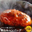 【ふるさと納税】ブランド豚100% 煮込みハンバーグ 220...
