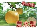 【ふるさと納税】鈴木農園 特撰甘果逸品 豊水梨5kg