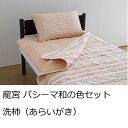 【ふるさと納税】龍宮 パシーマ和の色セット 洗柿(あらいがき)