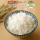 【ふるさと納税】元気つくし 3カ月 定期便 合計15kg (...