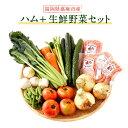 【ふるさと納税】数量限定 ハム+生鮮野菜セット ボンレスハム...