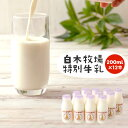 【ふるさと納税】数量限定 白木牧場 特別牛乳 200ml×1...