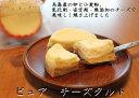 【ふるさと納税】無添加チーズのピュアチーズタルト【5個入り】