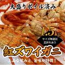 【ふるさと納税】A197.ボイル紅ズワイガニ(1.5kg)