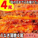 【ふるさと納税】A598.『丑の日までにお届け!!』うなぎの蒲焼4尾(計800g以上).2021年6