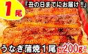 【ふるさと納税】Z126.『丑の日までにお届け!!』うなぎの...