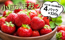 【<strong>ふるさと納税</strong>】【訳あり.限定品】あまおう.小粒ですが約1280g(先行受付.2021年1月以降発送)