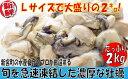 【ふるさと納税】A304.旬を急速凍結した濃厚な牡蠣(2kg...