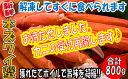【ふるさと納税】A530.獲れたてボイル「本ズワイ蟹」800g...