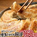 【ふるさと納税】ZI12.福岡・博多の味『博多一口餃子』16...