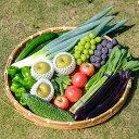 【ふるさと納税】【直売所みなみの里厳選】筑前町・旬のとれたて果物、野菜セット