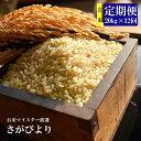 【ふるさと納税】V-12 《12ヶ月定期便》【特A】佐賀県産さがびより 玄米(毎月20kg×12回)