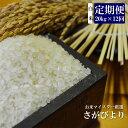 【ふるさと納税】V-11 《12ヶ月定期便》【特A】佐賀県産さがびより 白米(毎月20kg×12回)