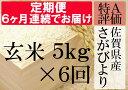 【ふるさと納税】G-5 《6ヶ月毎月お届け》佐賀県産さがびよ...