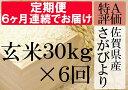 【ふるさと納税】V-3 【特A】《6ヶ月定期便》佐賀県産さがびより 玄米(毎月30kg×6回)