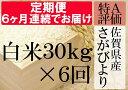 【ふるさと納税】V-2 【特A】《6ヶ月定期便》佐賀県産さがびより 白米(毎月30kg×6回)