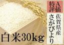 【ふるさと納税】F-9 【30年産新米】【特A】厳選!佐賀県...