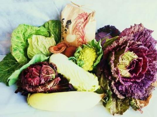【ふるさと納税】よしのがり野菜セットレギュラー+脊振石清水米20キロ(36C20)