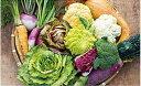 【ふるさと納税】【定期コース】イタリア野菜セットラージ(52L01)