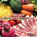 【ふるさと納税】背振ジビエ1kgと旬の野菜16品BBQセット...