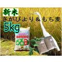 【ふるさと納税】A5-040【新米】美味しさ自慢!さがびより5kg【もち麦2袋つき】...