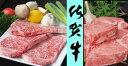 【ふるさと納税】JC-005 佐賀牛ヒレ3枚+特大サーロインステーキ3枚
