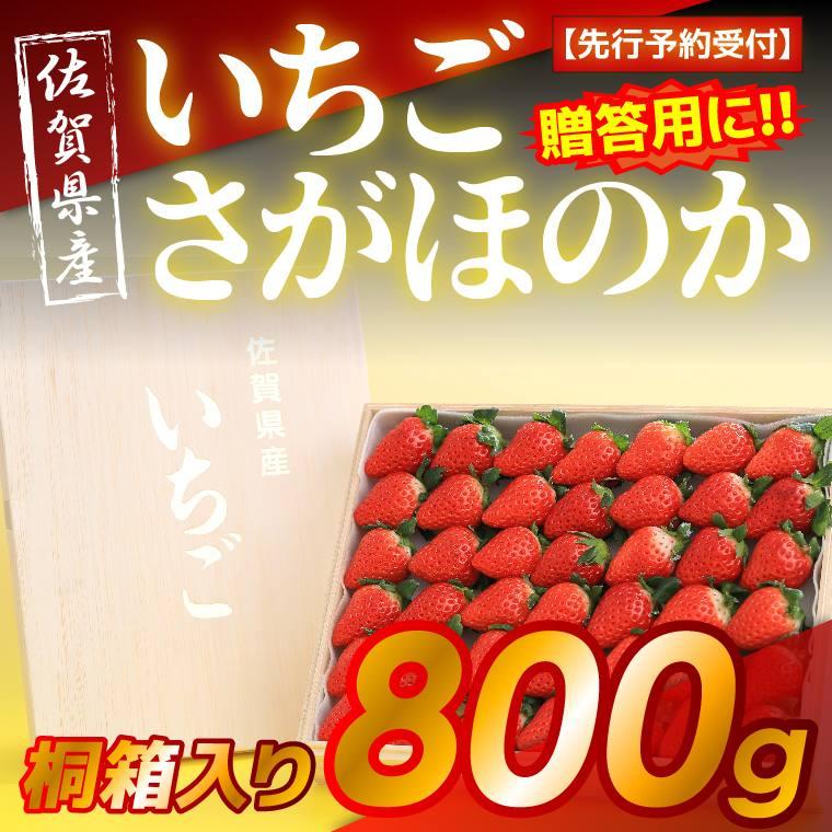 【ふるさと納税】 【先行予約受付】佐賀県産 高糖度いちご さがほのか 800g 桐箱入り