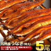 【ふるさと納税】九州産「うなぎの蒲焼き」 5尾(特大)