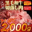 【ふるさと納税】九州産 黒毛和牛 切落し肉 2000g