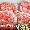 【ふるさと納税】九州産豚「モモしゃぶしゃ...