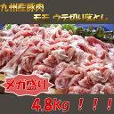 【ふるさと納税】【超目玉商品】九州産 豚モモ ウデ 切り落と...